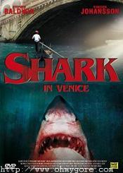 Shark in Venice affiche